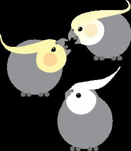 Parblue (Whiteface, Pastelface, Creamface)