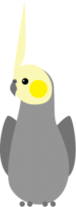 yellowcheek2x
